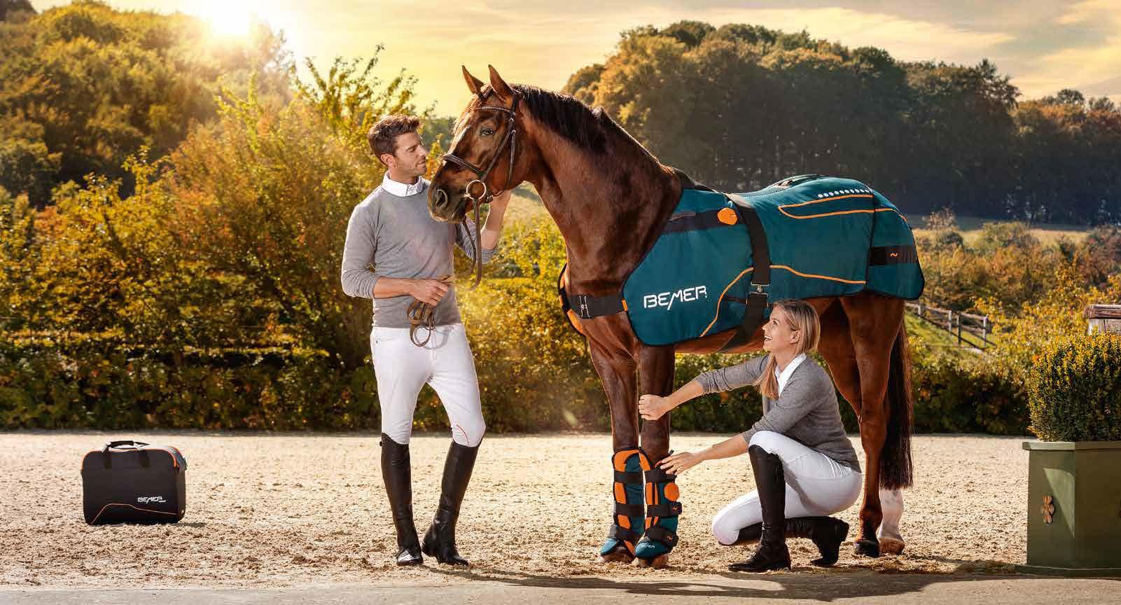 BEMER Equestrian PEMF