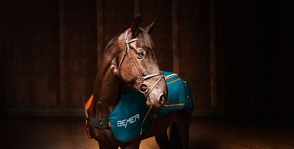 Revolutionary Horse Set Launches by BEMER in US