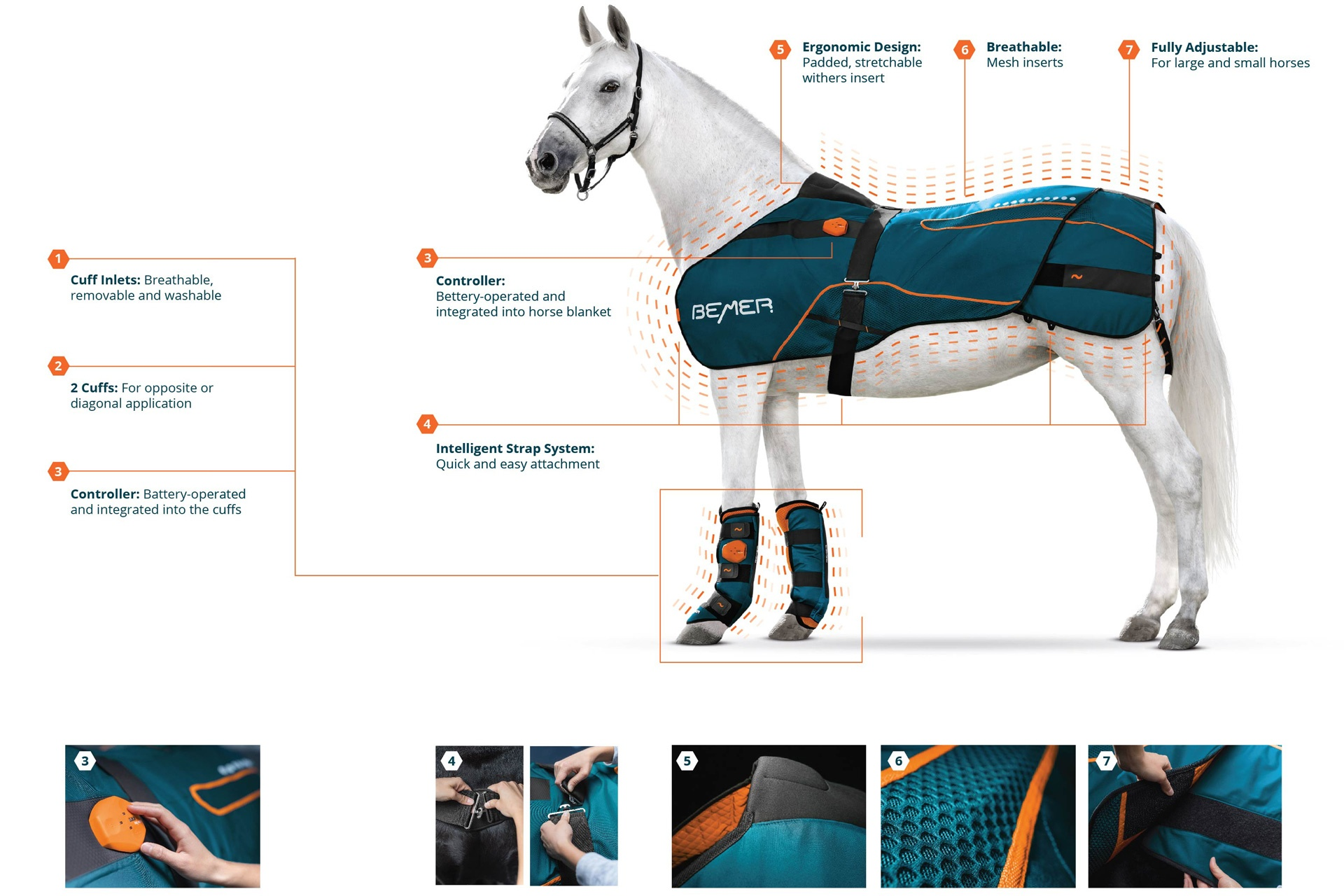 BEMER Horse-Set Features