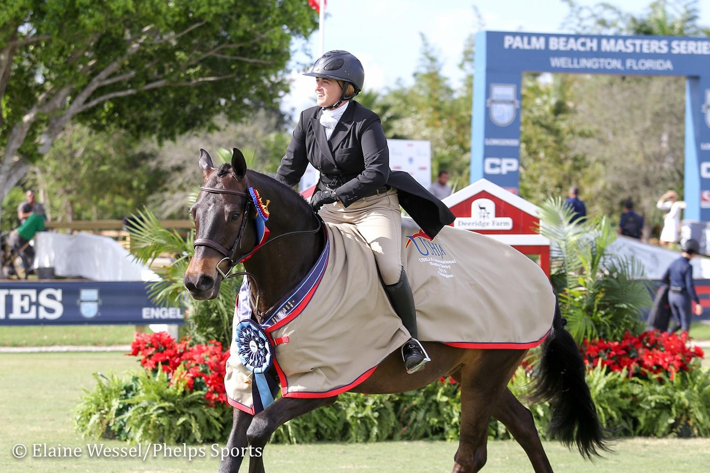 BEMER BEST PEMF FOR HORSES